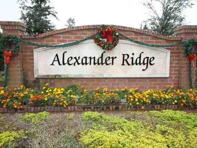 Alexander Ridge