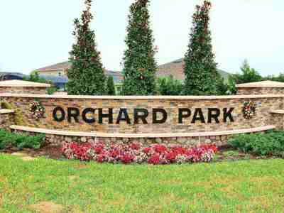 Orchard park