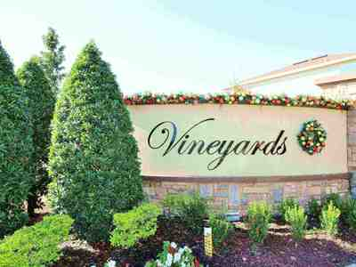 Vineyards Homes For Sale Horizons West Florida 34787|Wendy Morris Realty
