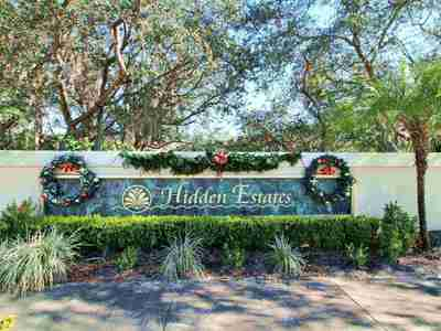 Hidden Estates Homes For Sale|Dr Phillips Hidden Estates, Orlando, FL Real Estate & Homes for Sale | Wendy Morris Realty