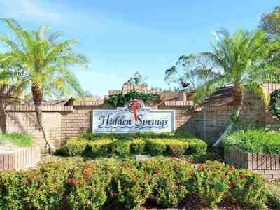 Hidden Springs Homes For Sale|Hidden Springs, Doctor Phillips, FL Real Estate & Homes for Sale | Hidden Springs Dr Phillips