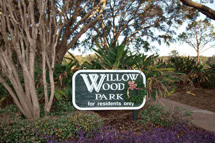 Willowwood Doctor Phillips Florida | Wendy Morris Realty
